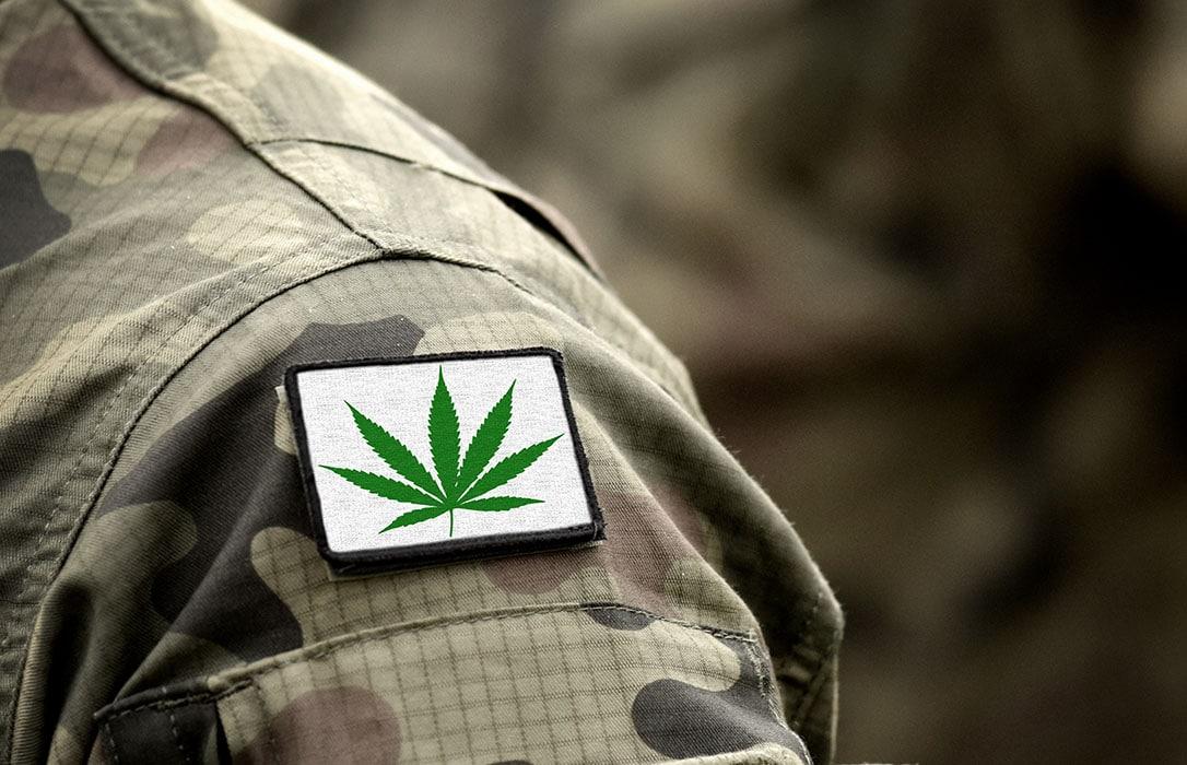 Paziente di marijuana medica veterano disabile rilasciato dalla prigione
