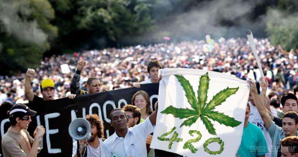 cannabis day, giornata mondiale della marijuana
