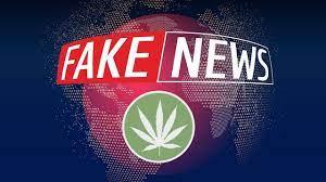 notizie false, fake news sulla marijuana, e sulla cannabis