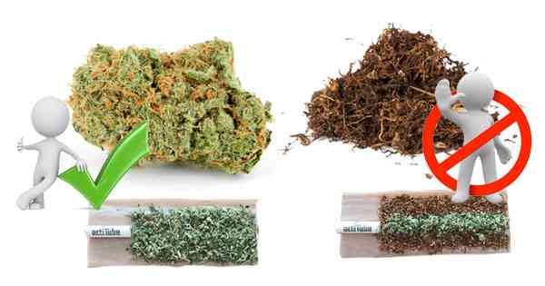 come fumare marijuana e hashish senza tabacco.jpg