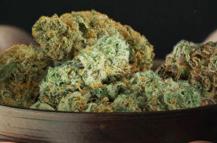 le varietà di Marijuana- La bluberry
