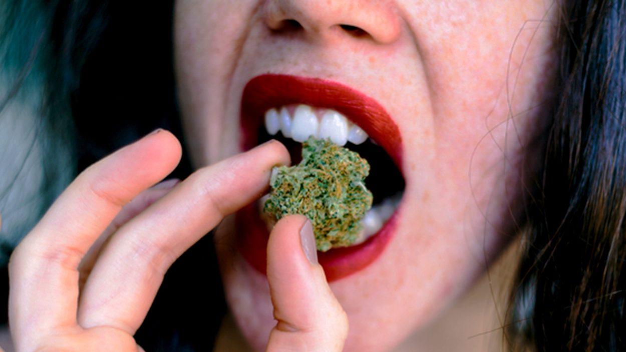 Mangiare Marijuana? Questo È Quello Che Devi Sapere!