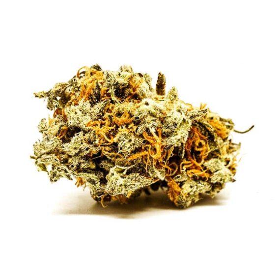 cheese weed, blueberry weed, cheese ganja, blueberry erba, ganja