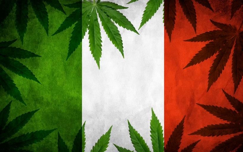 Marijuana Legale Con Basso Thc